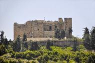 Kreuzritterbug Ajloun